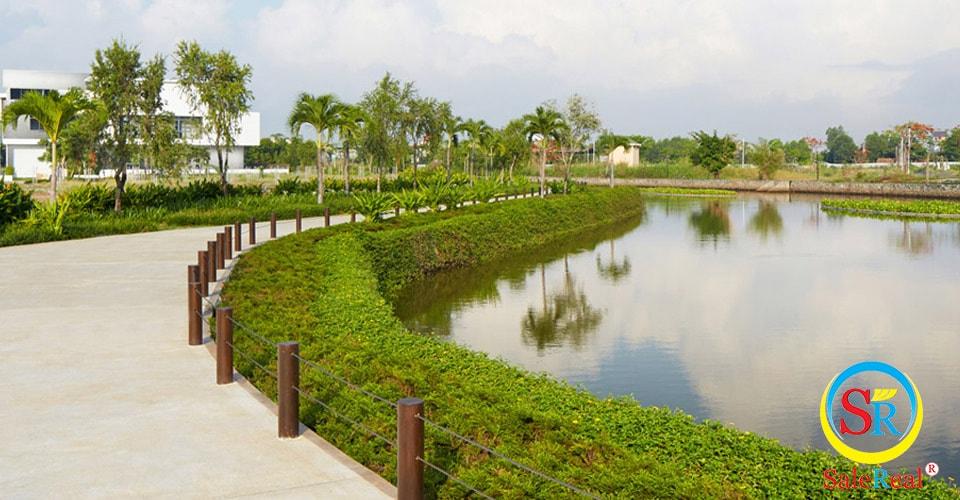 Công viên ven hồ sinh thái rộng 1 ha đẹp tuyệt vời